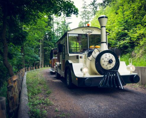 Podczas drogi na Torfowiska